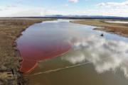 Росприроднадзор произвел расчет ущерба экологии, нанесенный аварией в Норильске