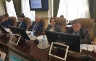 Состоялось заседание Общественного совета при Минприроды России