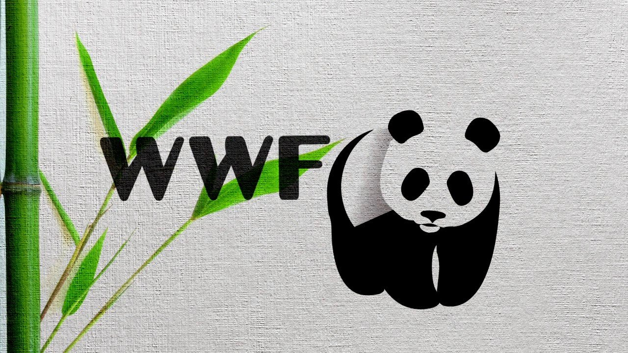 13 заповедников и национальных парков получат гранты от WWF